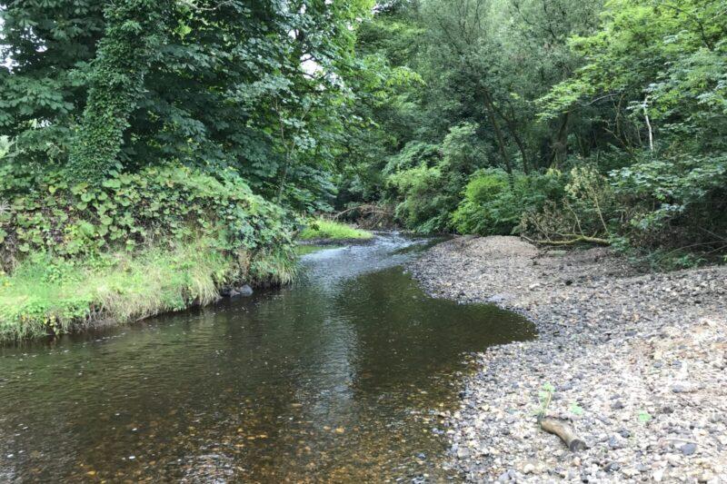 stony-river-bed